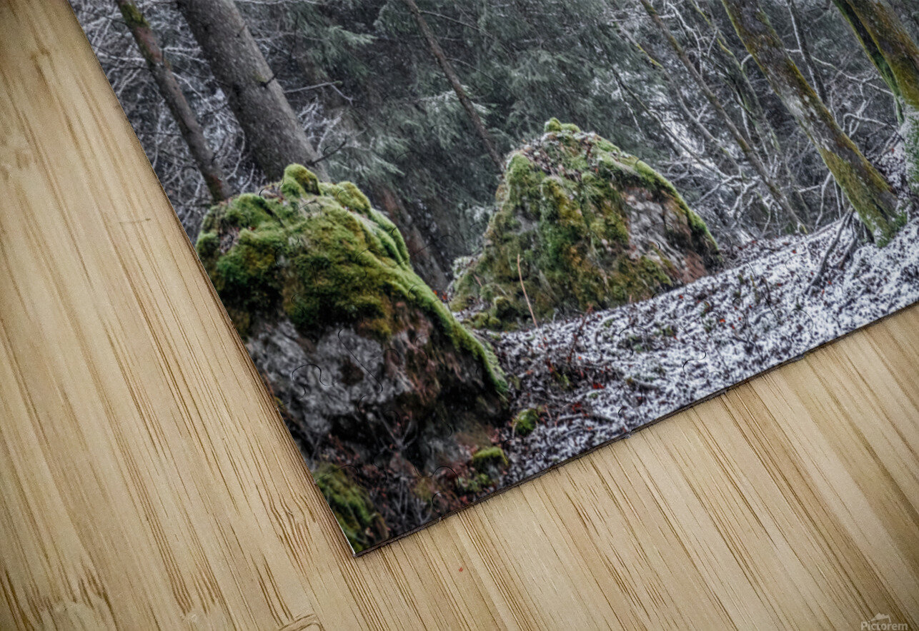 Winter forest HD Sublimation Metal print