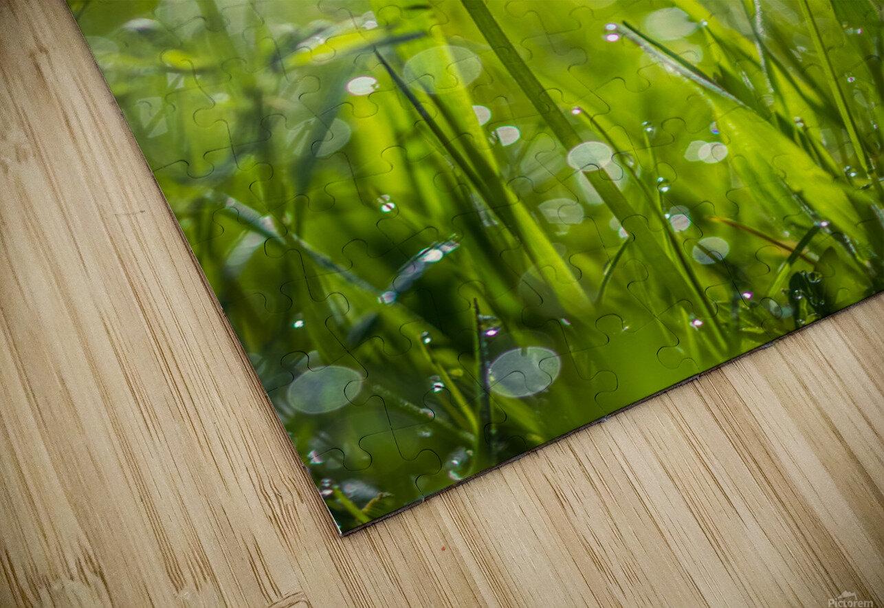 Summer meadow HD Sublimation Metal print