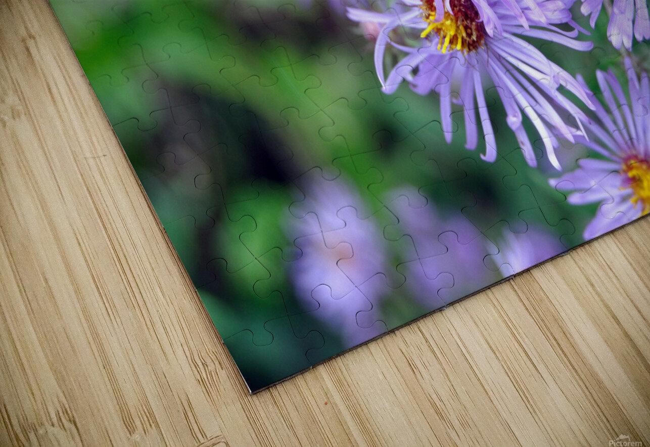 0056 HD Sublimation Metal print