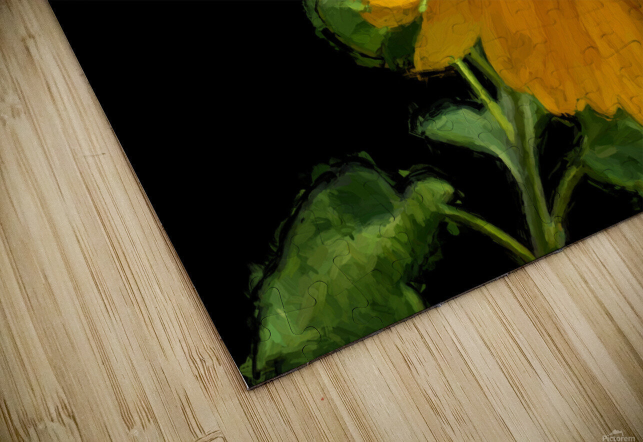 Solitary Sunflower HD Sublimation Metal print