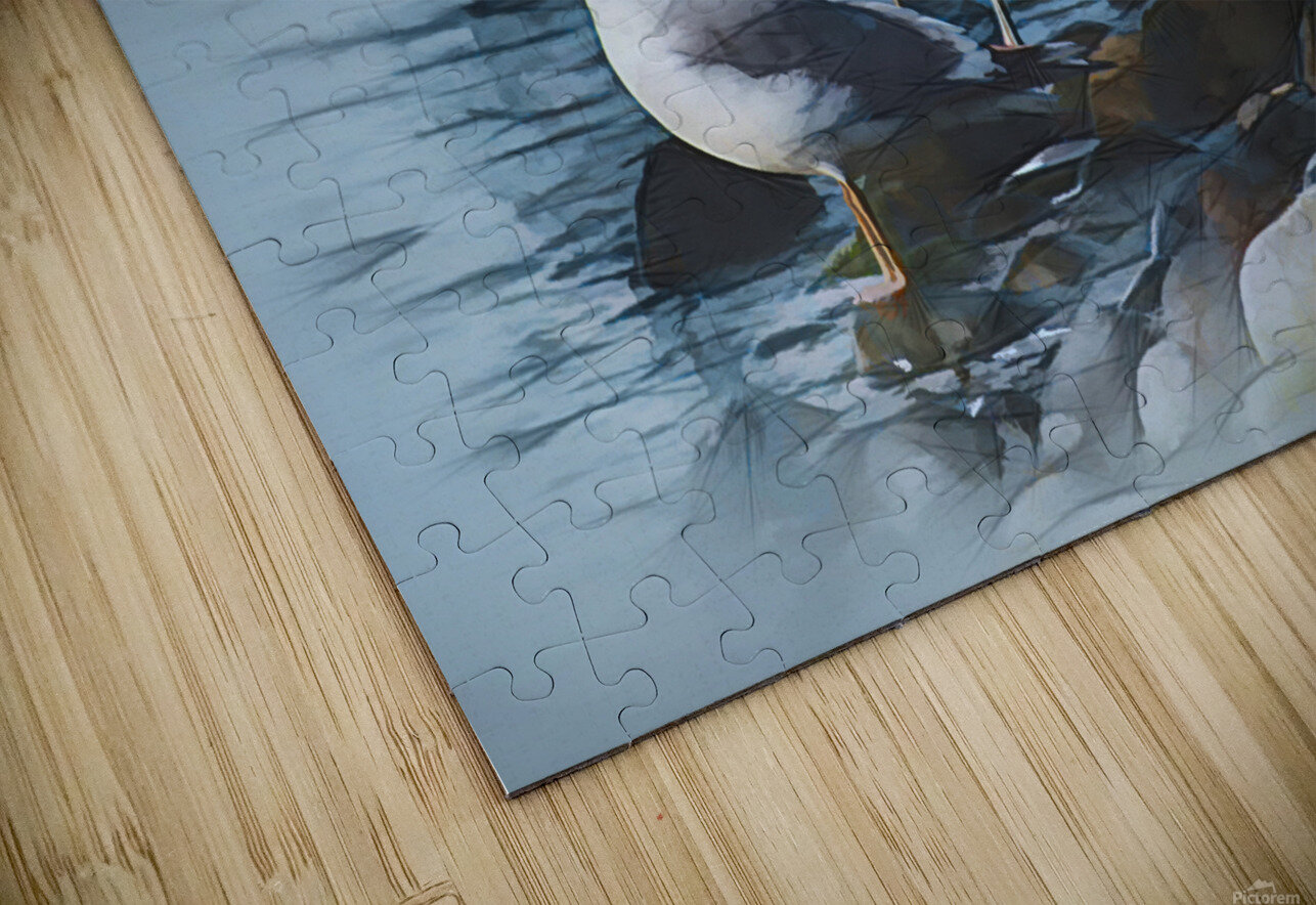 Preening Gulls HD Sublimation Metal print