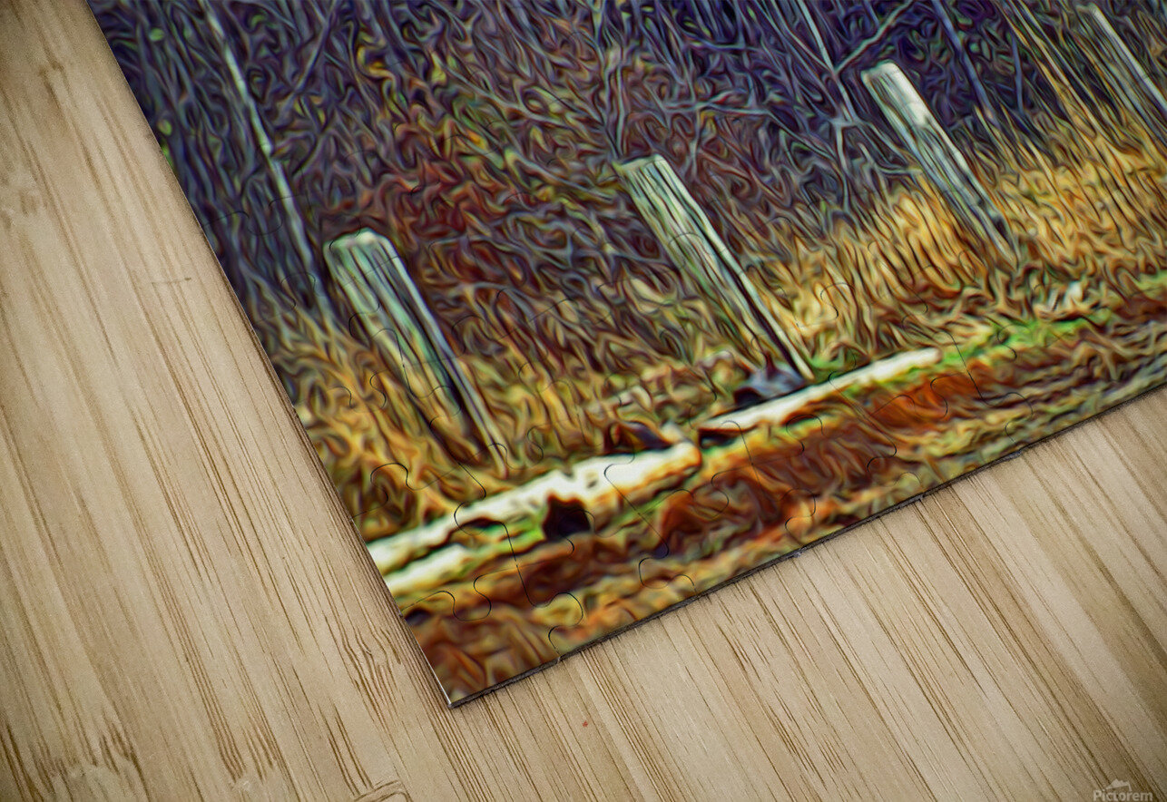 Weathered Fence Posts HD Sublimation Metal print