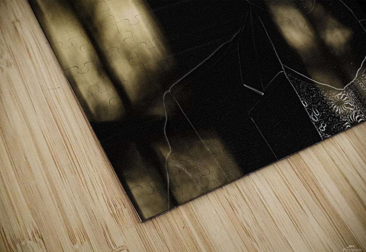 Entrer dans la lumiere -  Step into the light HD Sublimation Metal print