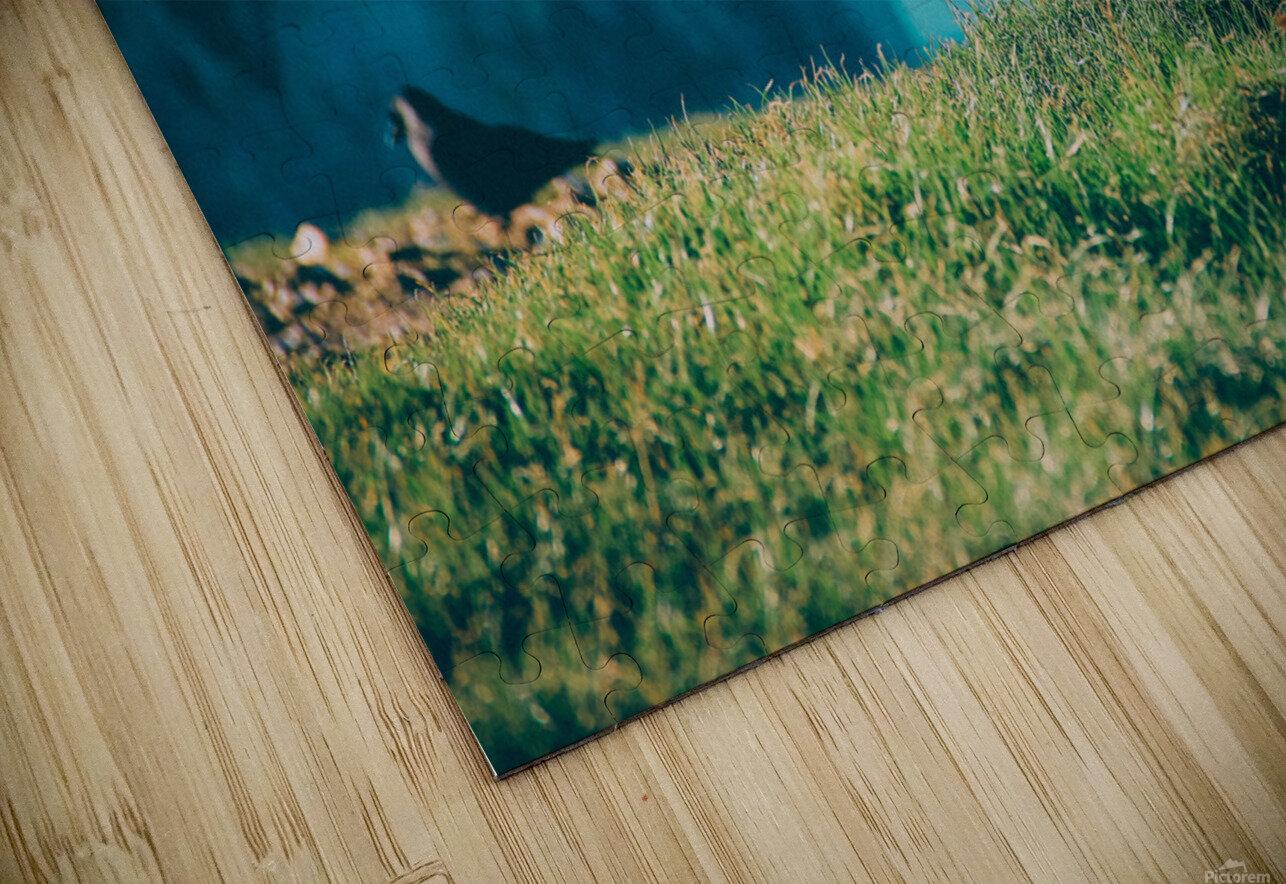 Photobook 8167 HD Sublimation Metal print