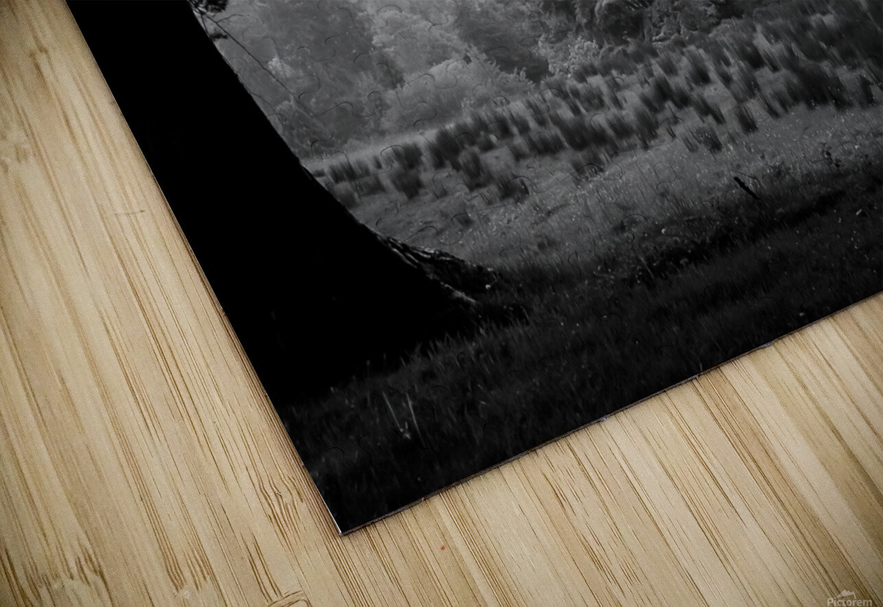 Black and White Field HD Sublimation Metal print