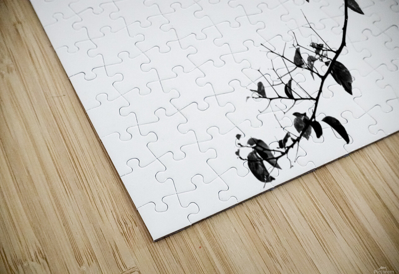 Tree Branch II HD Sublimation Metal print