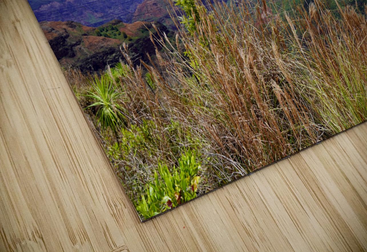 Beautiful View in Waimea Canyon on the Island of Kauai HD Sublimation Metal print