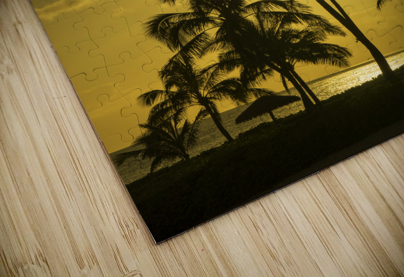 Palms and Hulu Thatched Tiki Umbrellas in the Golden Light of Sunset HD Sublimation Metal print