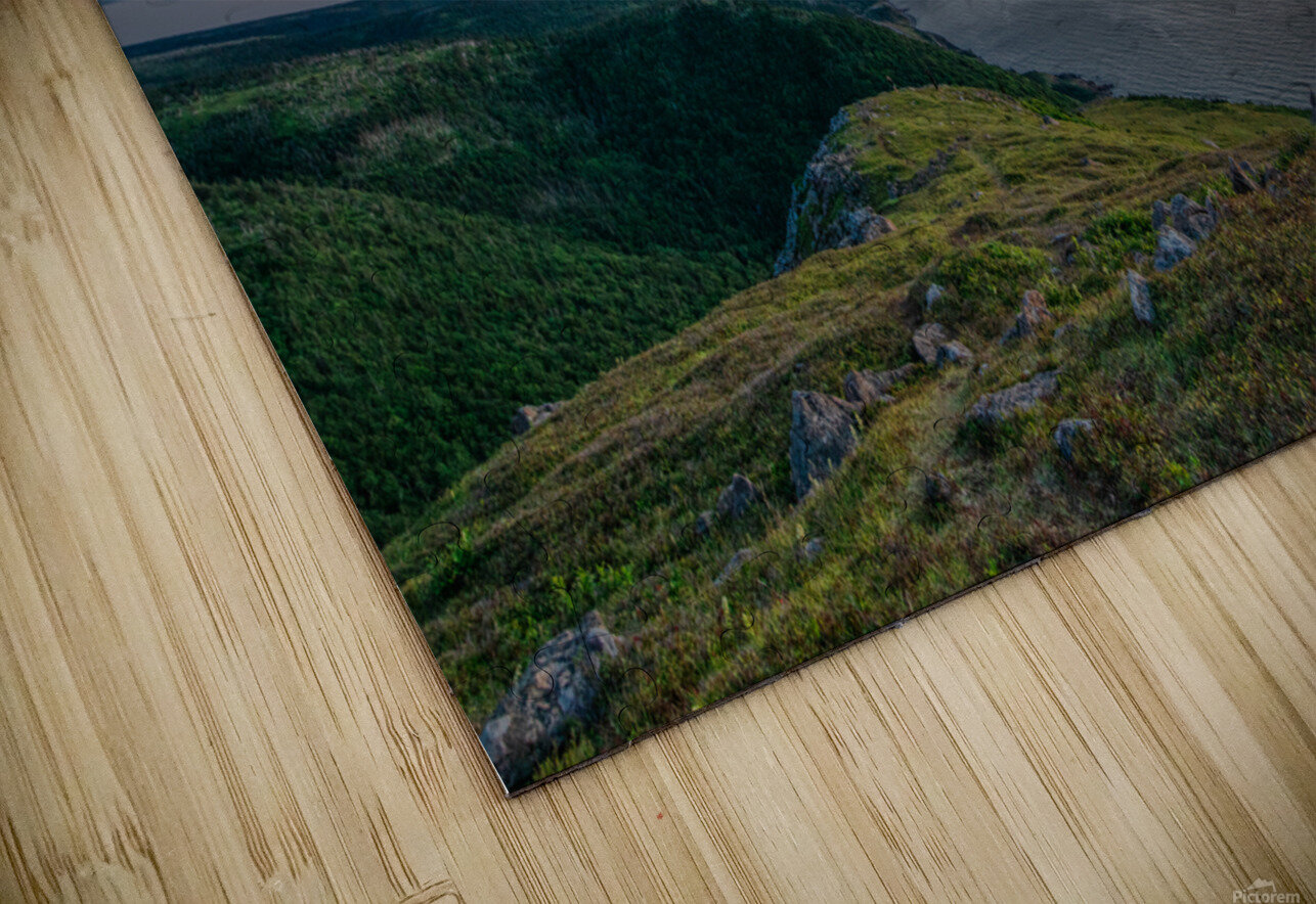 Blueberry Mountain Vista HD Sublimation Metal print