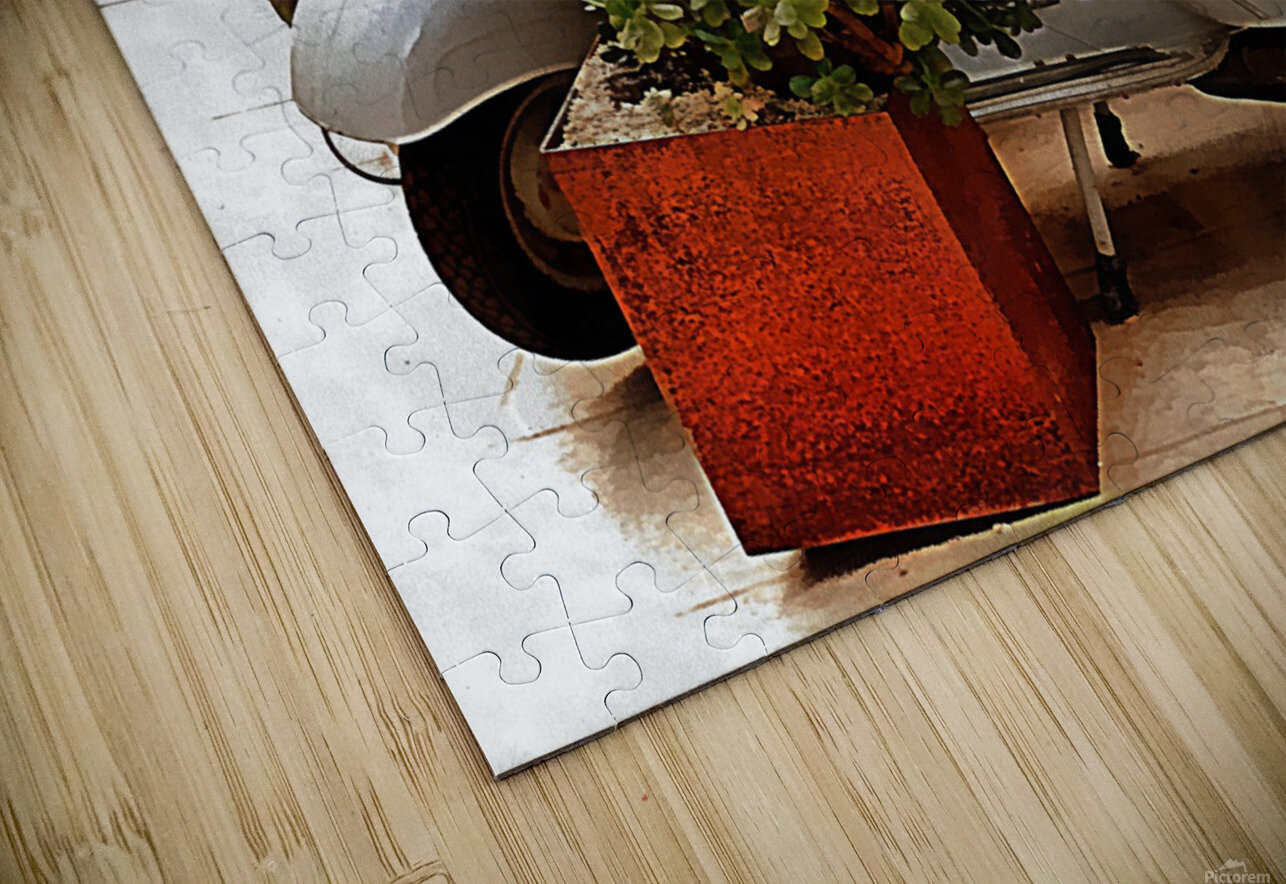 Vespa As Part Of Succulent Display HD Sublimation Metal print