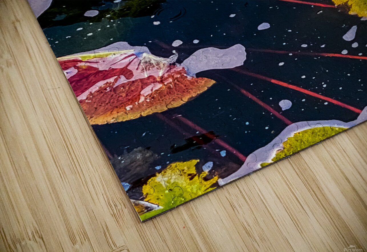 Float Away HD Sublimation Metal print