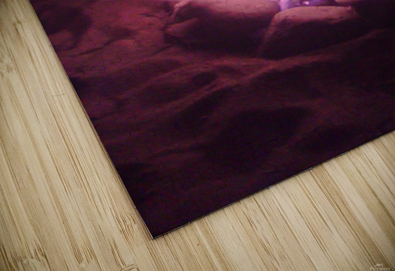 Fired HD Sublimation Metal print
