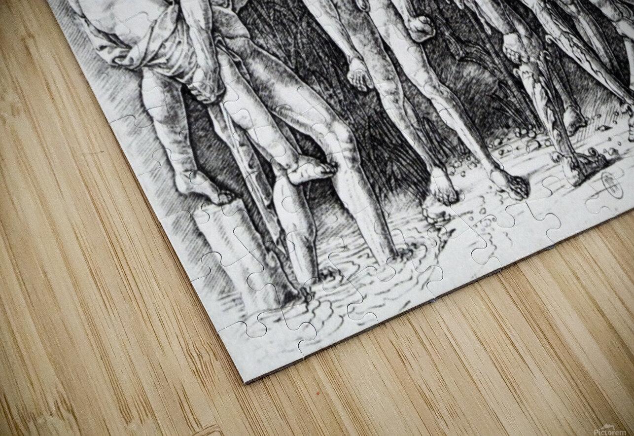 Bacchanal in Silene HD Sublimation Metal print