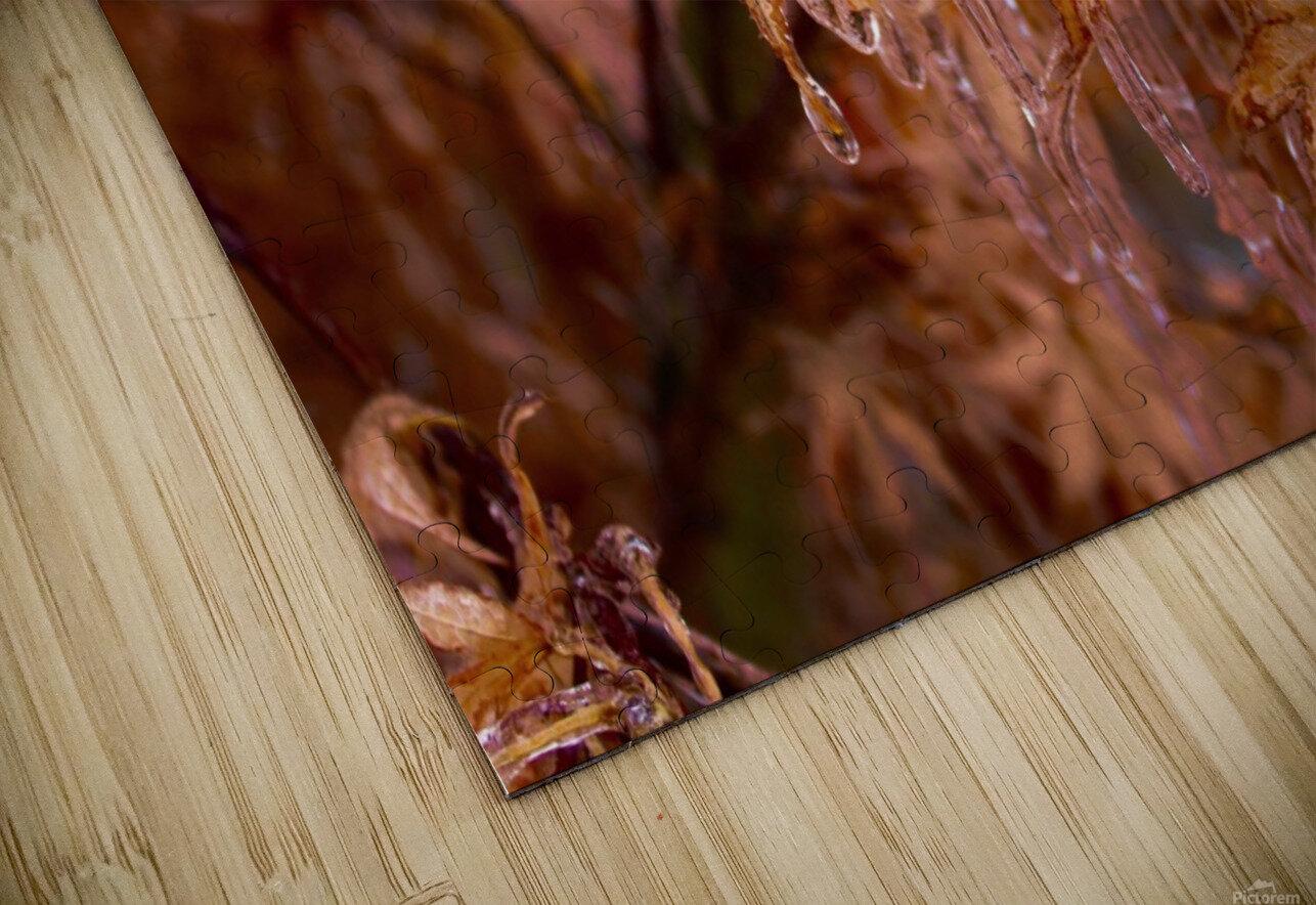 Maple Leaves HD Sublimation Metal print