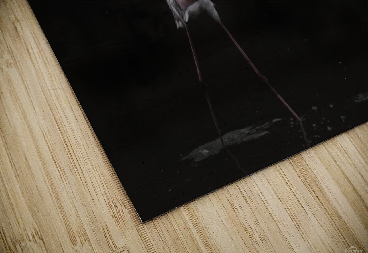 Not all is rosy HD Sublimation Metal print