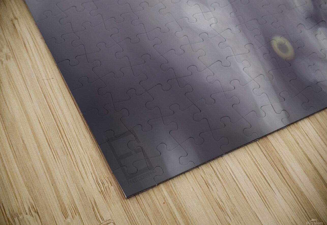 -- HD Sublimation Metal print