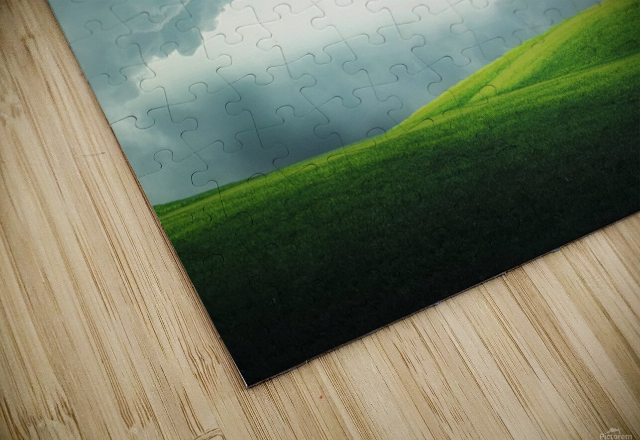 Lonely tree HD Sublimation Metal print