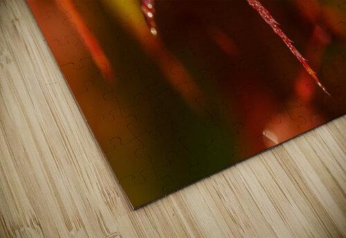 Japanese Maple (Acer palmatum) turning red in the autumn; Astoria, Oregon, United States of America jigsaw puzzle