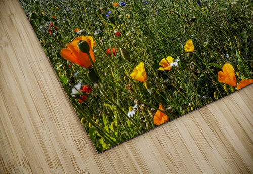 A windmill against a blue sky and cloud with a field of wildflowers in the foreground; Whitburn, Tyne and Wear, England jigsaw puzzle