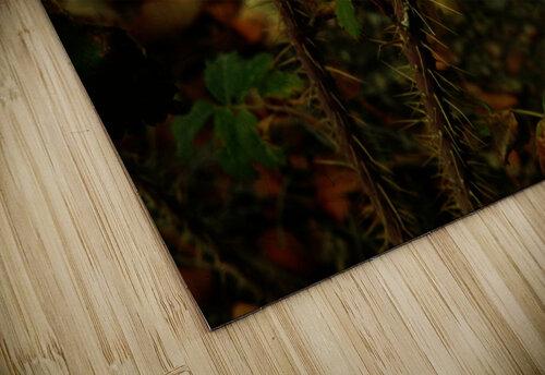 sofn-163F956E jigsaw puzzle