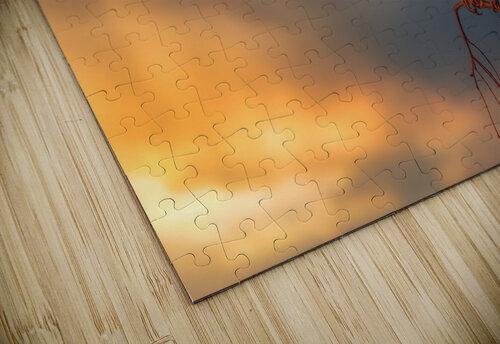 Bruant chanteur jigsaw puzzle