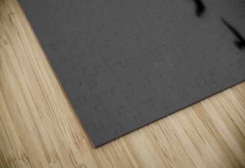 Bird and Shadows jigsaw puzzle