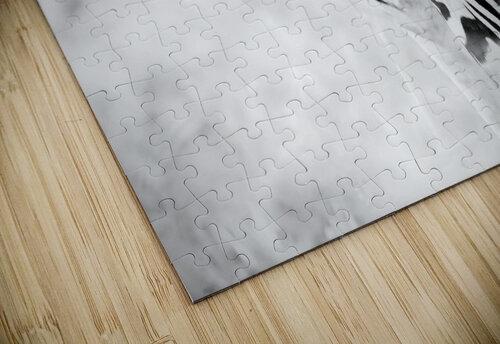 AdriaanPrinsloo 6718 jigsaw puzzle