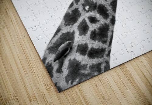 AdriaanPrinsloo 20089 jigsaw puzzle