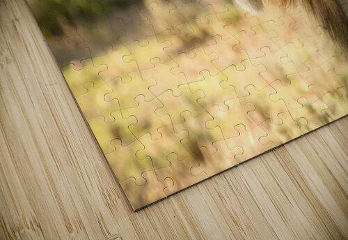 AdriaanPrinsloo 6942 jigsaw puzzle