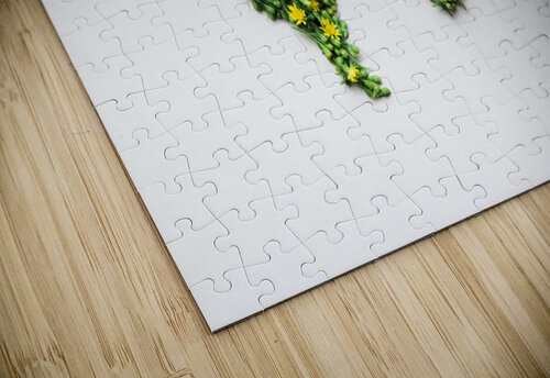 Light Continent Ciriel jigsaw puzzle