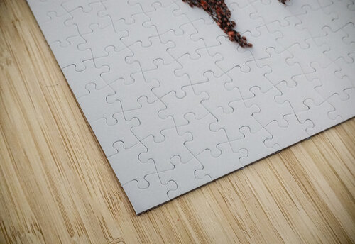 Light Continent Desertia jigsaw puzzle