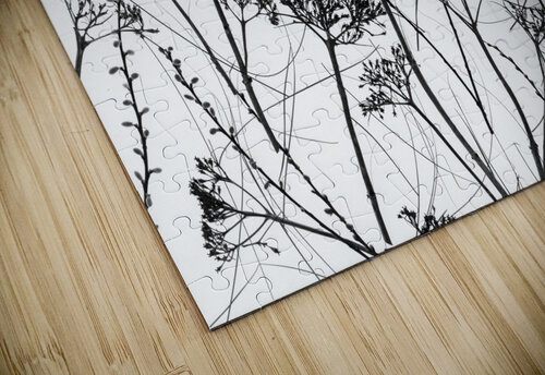 Silhouette of dried plants jigsaw puzzle
