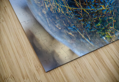 Feuillage jigsaw puzzle