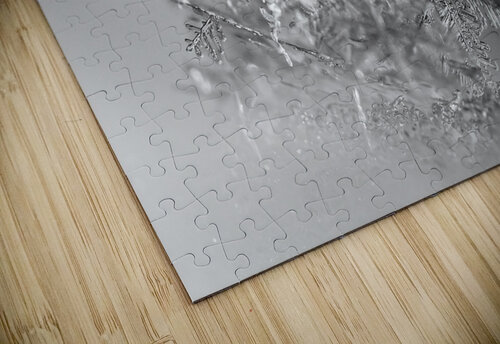 Pointe jigsaw puzzle