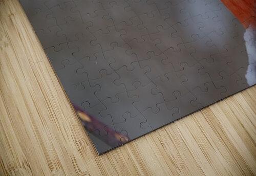 Cardinal ap 1866 jigsaw puzzle