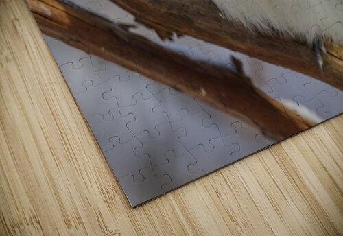 Titmouse ap 1868 jigsaw puzzle