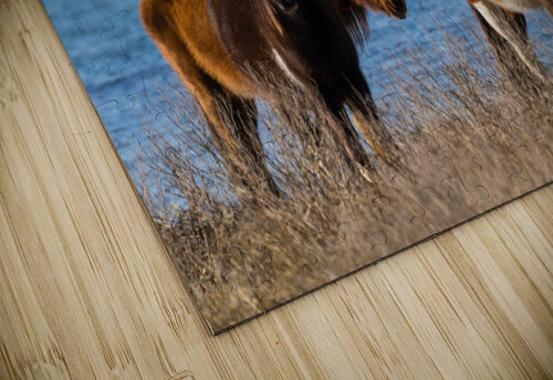 Wild Horses ap 2796 jigsaw puzzle