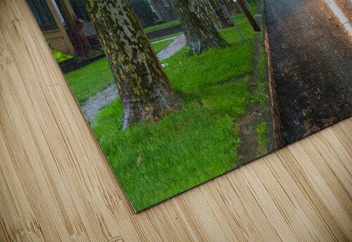 Summer Rain ap 2892 jigsaw puzzle