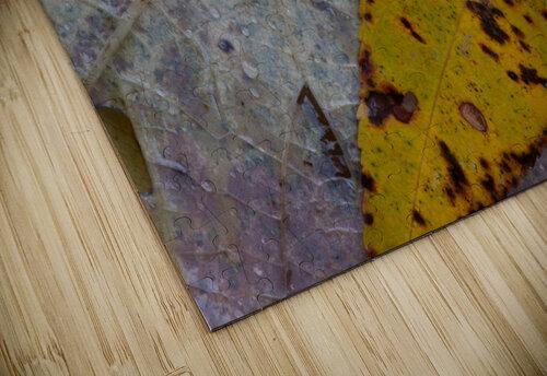 Choke Cherry Leaf ap 1952 jigsaw puzzle