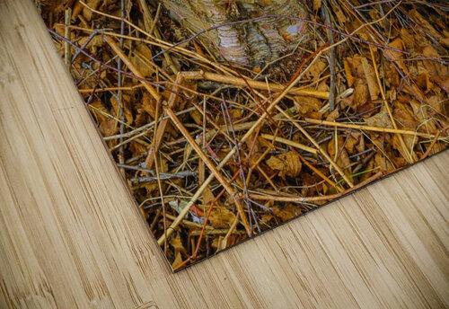 Barn Trolley ap 2241 jigsaw puzzle