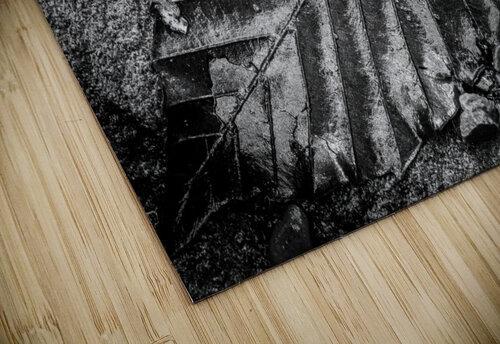 Leaf ap 1931 jigsaw puzzle
