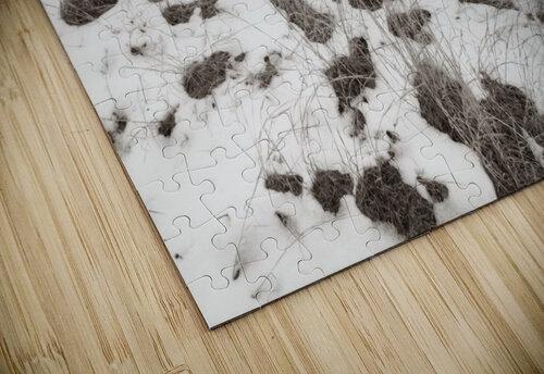 Step Side ap 1734 B&W jigsaw puzzle