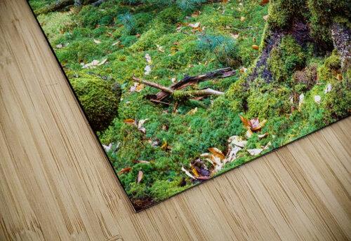 Fallen Giant ap 1513 jigsaw puzzle