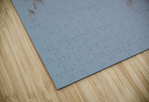 Ice Dunes ap 1987 jigsaw puzzle