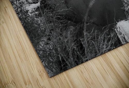 Snow Storm ap 2706 jigsaw puzzle