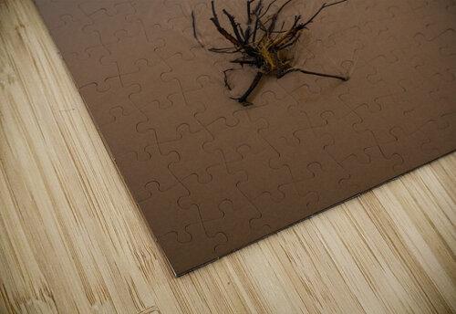 Lake Michigan ap 2415 jigsaw puzzle