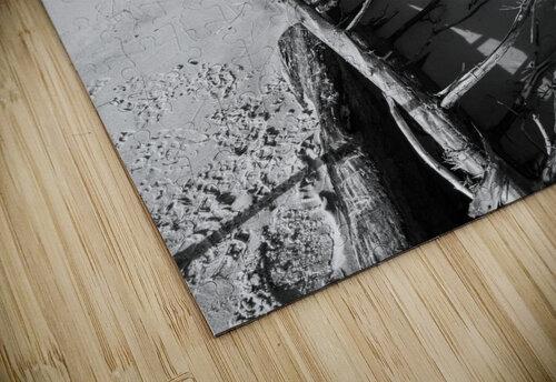 Driftwood ap 2482 B&W jigsaw puzzle