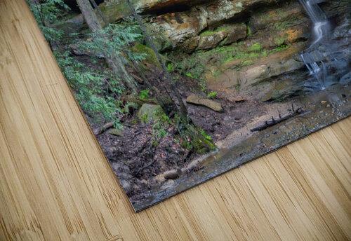Lodge Falls apmi 1649 jigsaw puzzle