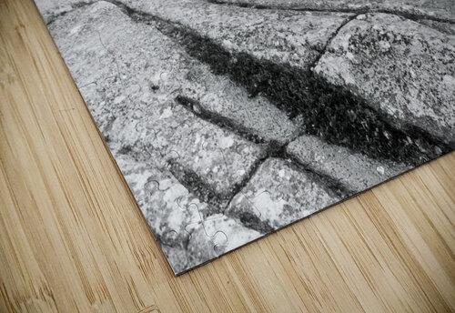Lichen and Granite ap 2340 B&W jigsaw puzzle