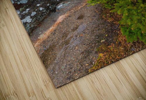 Trail ap 2341 jigsaw puzzle